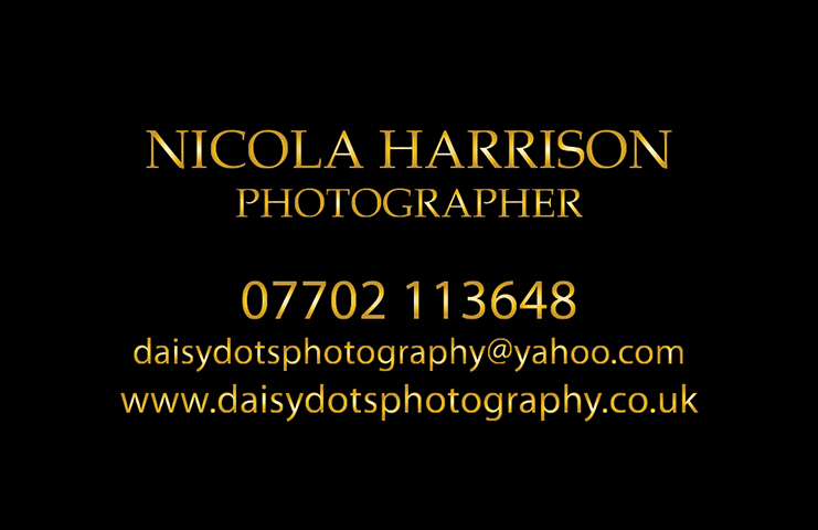 Daisy Dots business card 1217 PRESS