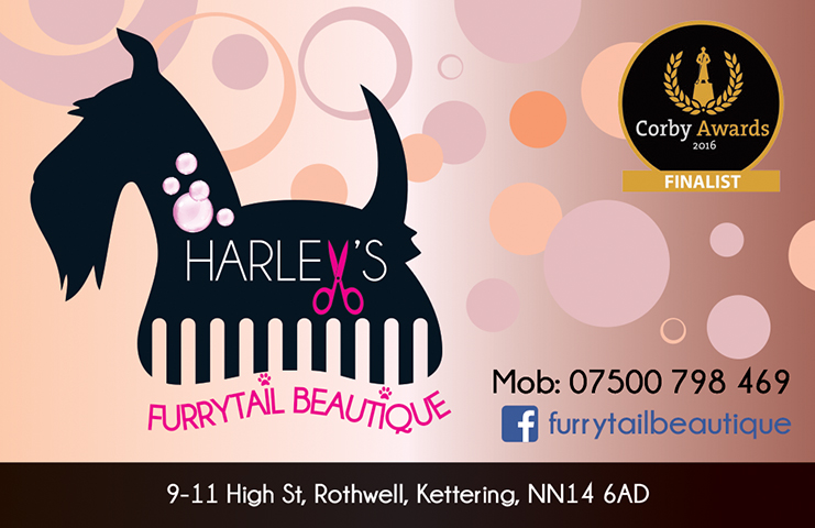 harley-rothwell-business-card1